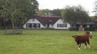 foto Zorgboerderij advertentie Brenda in Harskamp
