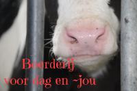 foto Hovenier advertentie Miranda in Winterswijk Brinkheurne