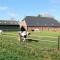 foto Zorgboerderij advertentie zorgboerderij Minous in Onstwedde