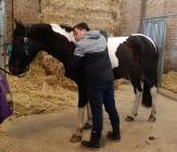 Foto van hulpvrager Sandy in Heerlen