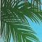 foto Aangepaste vakanties advertentie Alja in Nieuwolda