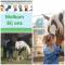 foto Aangepaste vakanties advertentie Zorgboerderij en Logeerboerderij Bij Ons in Groenlo