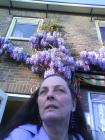 foto Koken advertentie Mirte in Nieuwebrug