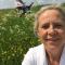 foto Boodschappen hulp advertentie Wanda in Almelo