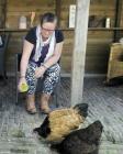 foto Logeerhuis advertentie Warrie in Zorgvlied