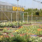 foto Zorgboerderij advertentie EPRIC in Babberich