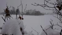 foto Boodschappen hulp advertentie Ayeza in Aalten