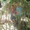 foto Aangepaste vakanties advertentie Toon in Hulten