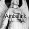 foto Begeleiding advertentie Ambulink in Hattemerbroek