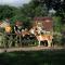 foto Zorgboerderij advertentie De Roek Zorgbedrijf in Driel