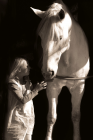 foto Begeleiding advertentie Individuele begeleiding mbv paarden in Spijkenisse