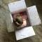 foto Kinderdagverblijf vacature Eline in Hernen