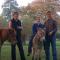 foto Zorgboerderij advertentie zorgboerderij Eck-stra in Randwijk